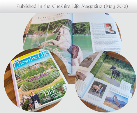 Cheshire Life Magazine Publication