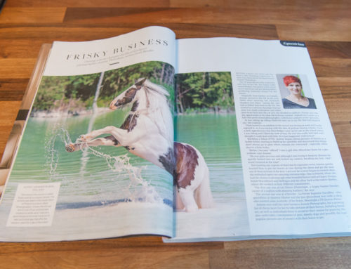 Cheshire Life Magazine – Featuring my equestrian work