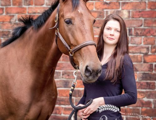 Horse Photoshoot – Greater Manchester