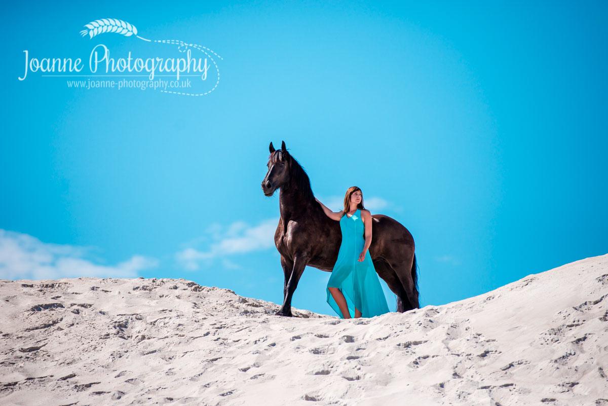 Friesan on dune