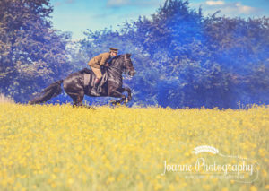 Stunt Horse Rider