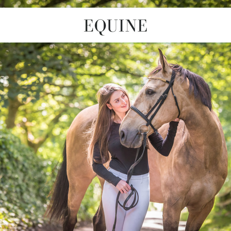 equine photographer cheshire