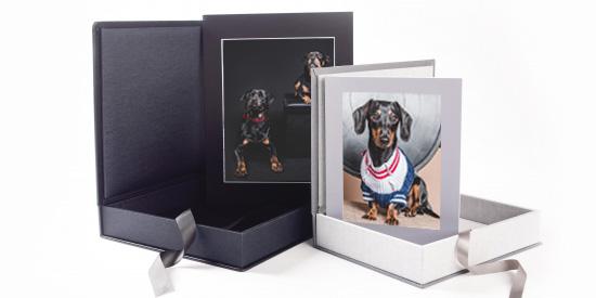 Folio Box Pet Photography