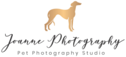 Horse Photographer and Pet Photographer based in Cheshire, UK Logo