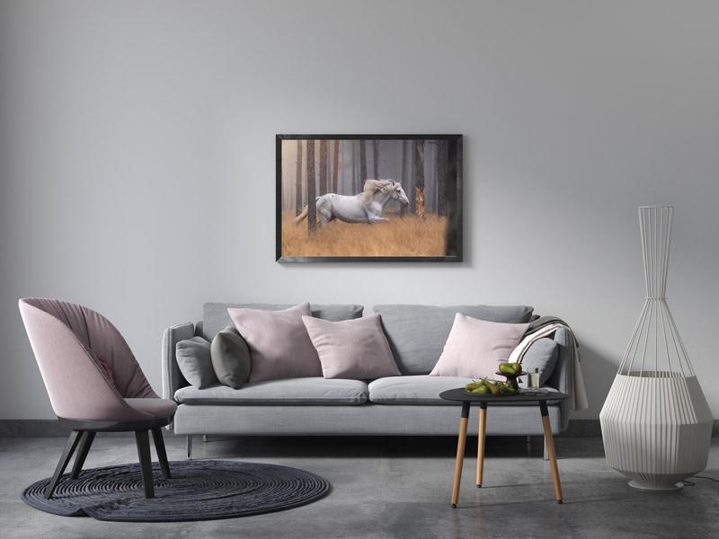 Frame-Horse-Landscape-Web